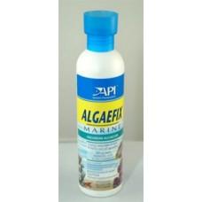 API Algaefix Marine 8 Oz.