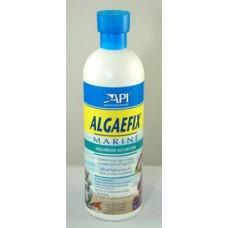 API Algaefix Marine 16 Oz.