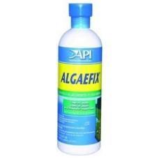 API Algaefix Freshwater 16 OZ