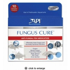 API Fungus Cure Powder Packs