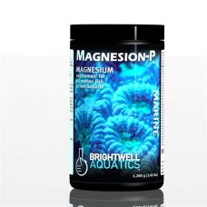 Brightwell Magnesion-P Dry Magnesium Supplement 300 Gm