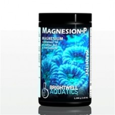 Brightwell Magnesion-P-Dry Magnesium Supplement 600 GM