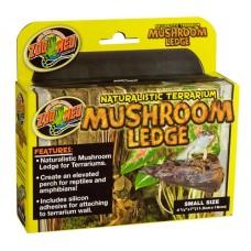 Mushroom Ledge SM
