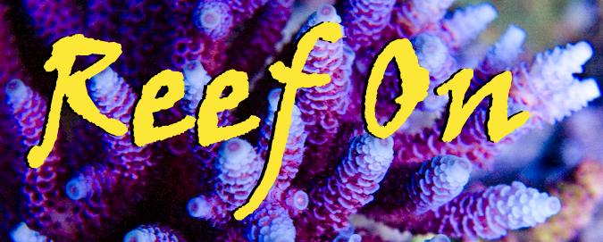 Reef On